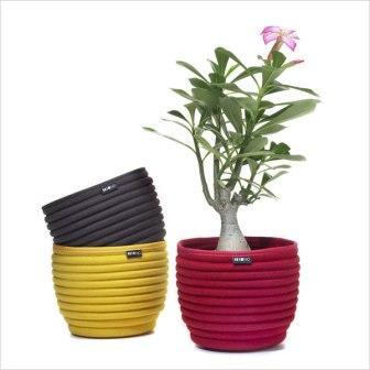 beehive-soft-bowls.jpg