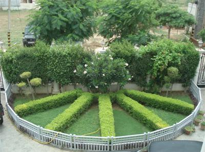 green-roofs-srajanorg.jpg
