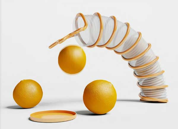 packaging for oranges
