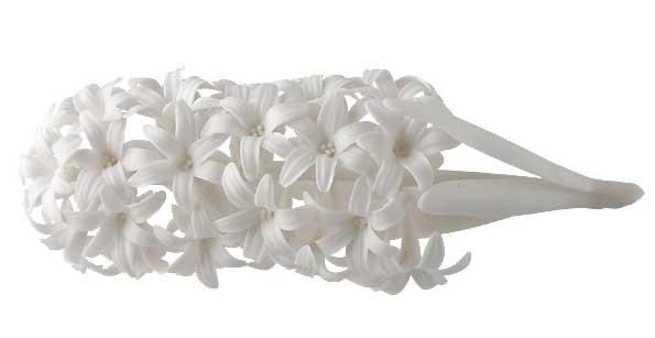 hyacinth porcelain
